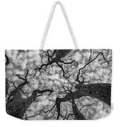 Catalpa And Altostrato Q Weekender Tote Bag by Scott Cordell