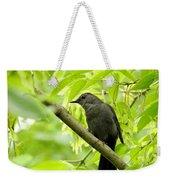 Catbird Weekender Tote Bag