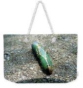 Caterpillar 3 Weekender Tote Bag