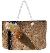 Caterpillar With Shadow Weekender Tote Bag