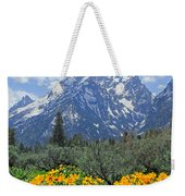 Dm9328-cathedral Group Tetons  Weekender Tote Bag