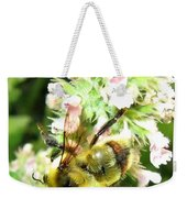 Catnip And The Bee Weekender Tote Bag