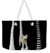 Cats At Night Weekender Tote Bag