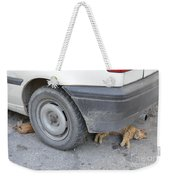 Cats Cats Weekender Tote Bag