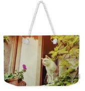Cats Eye View Weekender Tote Bag