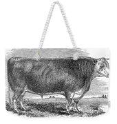 Cattle, C1880 Weekender Tote Bag