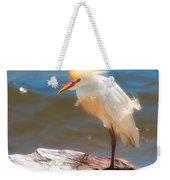 Cattle Egret In Breeding Plumage Weekender Tote Bag