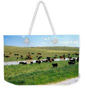 Cattle Graze On Reclaimed Land Weekender Tote Bag
