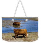 Cattle Scottish Highlanders, Zuid Kennemerland, Netherlands Weekender Tote Bag