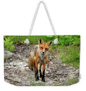 Cautious But Curious Red Fox Portrait Weekender Tote Bag