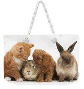 Cavapoo Pup, Rabbit, Guinea Pig Weekender Tote Bag