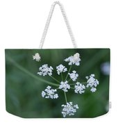 Cedar Park Texas Hedge Parsley Weekender Tote Bag