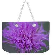 Cedar Park Texas Purple Thistle Weekender Tote Bag
