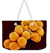 Cedar Pollen Sem Weekender Tote Bag by Susumu Nishinaga and SPL and Photo Researchers