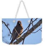 Cedar Wax Wing On The Lookout Weekender Tote Bag