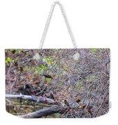 Cedar Waxwings Feeding 2 Weekender Tote Bag