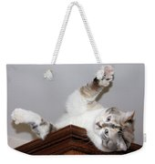 Ceiling Fairies Weekender Tote Bag