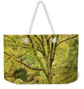 Central Park In Autumn Texture 5 Weekender Tote Bag