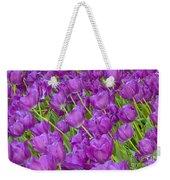 Central Park Spring-purple Tulips Weekender Tote Bag