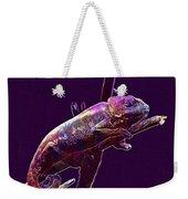 Chameleon Reptile Dinosaur Colors  Weekender Tote Bag
