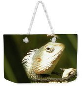 Chameleon Up-close 1 Weekender Tote Bag