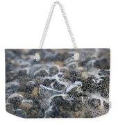 Champagne Cold Weekender Tote Bag