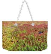 Changing Landscape II Weekender Tote Bag