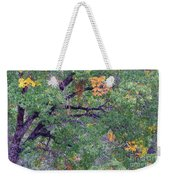 Changing Of The Seasons Weekender Tote Bag by Mary Deal