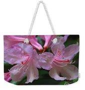 Chapmans Rhododendron Weekender Tote Bag