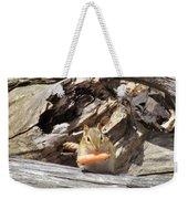 Charming Chipmunk Weekender Tote Bag