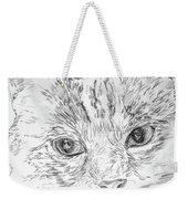 Chat Somnolant Resting Cat Weekender Tote Bag