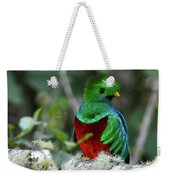 Check Me Out Weekender Tote Bag