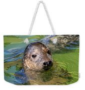 Cheeky Seal At Gweek Weekender Tote Bag