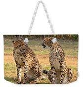 Cheetah Chat 2 Weekender Tote Bag