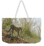 Cheetah Exploration Weekender Tote Bag
