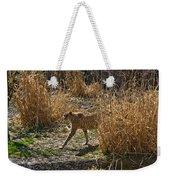 Cheetah  In The Brush Weekender Tote Bag