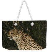 Cheetah Watching Weekender Tote Bag