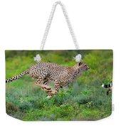 Cheetahs Acinonyx Jubatus Hunting Weekender Tote Bag