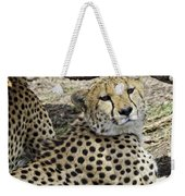 Cheetahs Resting Weekender Tote Bag