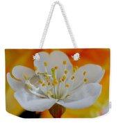 Cherry Flower In The Spring Weekender Tote Bag