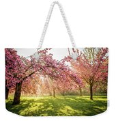 Cherry Flowers Garden Illuminated With Sunrise Beams Weekender Tote Bag