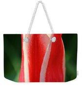 Cherry Pin Stripes Weekender Tote Bag