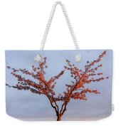 Cherry Tree Standing Alone In A Park, Lit By The Light  Weekender Tote Bag