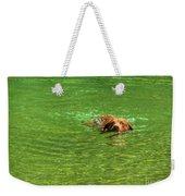 Chesapeake Bay Retriever Swimming Weekender Tote Bag