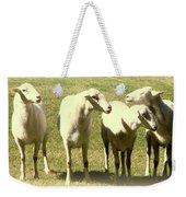 Cheviot Sheep Weekender Tote Bag