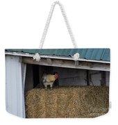 Chicken In Barn Weekender Tote Bag