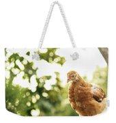 Chicken On Fence Weekender Tote Bag