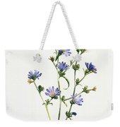 Chicory Weekender Tote Bag