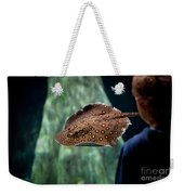 Child Watching Spotted Ray Fish Weekender Tote Bag