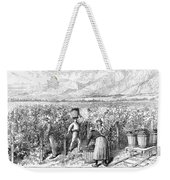 Chile: Wine Harvest, 1889 Weekender Tote Bag